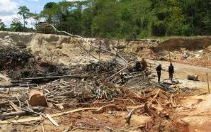 Est : neuf orpailleurs trouvent la mort dans une mine