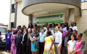 l'association jeunesse verte du Cameroun part en guerre contre l'obscurité…
