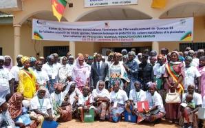 Boklé : 80 femmes formées dans les domaines agricoles et…