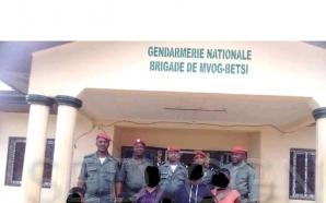 Mfou : La gendarmerie libère trois filles enlevées par un…