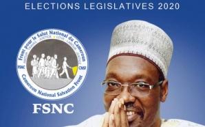 Issa Tchiroma Bakary candidat aux législatives à Garoua 1er