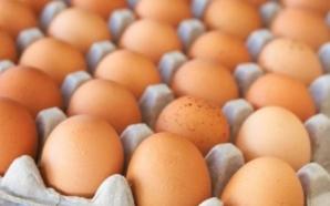 Inflation: Pourquoi les oeufs de poules sont-ils désormais rares sur…