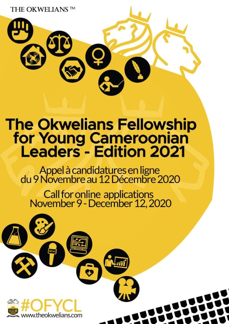 THE OKWELIANS FELLOWSHIP FOR YOUNG CAMEROONIAN LEADERS EDITION 2021 –…
